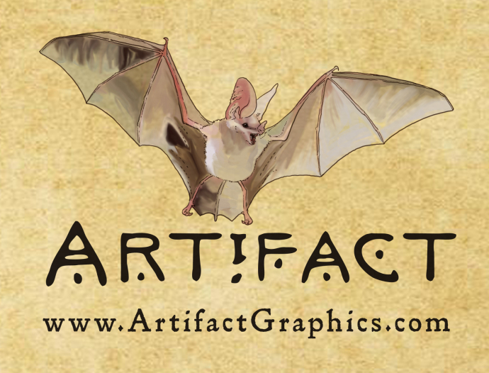 California leaf-nosed bat illustration by Michelle Leveille