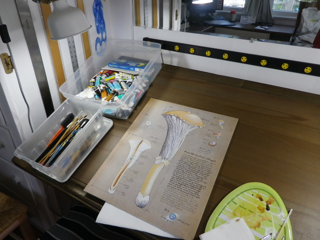 My general set-up with paints, brushes, and paper-plate palette on a drafting table.