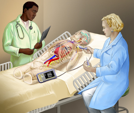 An instructor observes ultrasound technique using the mannequin. Illustration by Artifact Graphics.