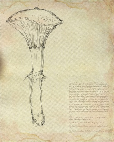 My first sketch of the mushroom was done in Photoshop, on a digital image of antique paper.